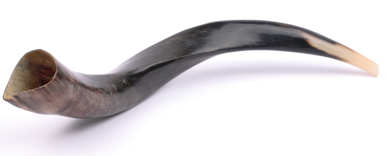 Close-up of a shofar against a white background